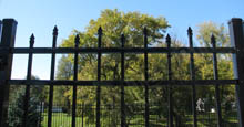 Bella Terra Metal Pool Gate in Black
