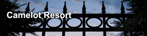 Camelot Ornamental Pool Fence With Decorative Finials and Circle Enhancements