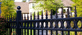 Camelot Residential Aluminum Fence With Optional Finials and Decorative Cirlces