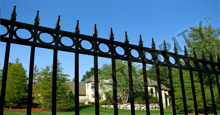 Camelot Aluminum Residential Fencing With Decorative Gold Finials and Circle Enhancements