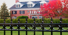 Providence Black Metal Residential Fence Panels With Historic Fleur de Lis Finials and Decorative Circles